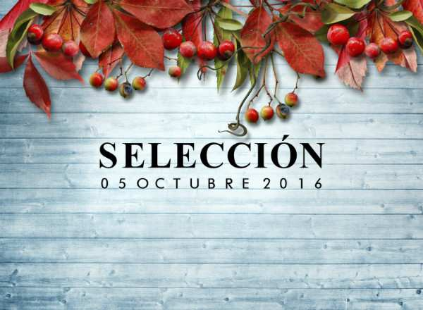 seleccion-tejidos-sostenibles-slow-fashion-next